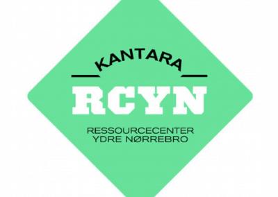 rcyn 19x19